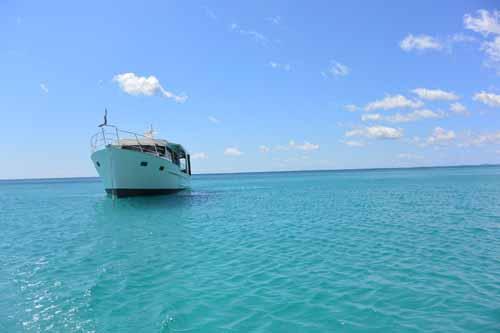 Platypus Bay 3 resized